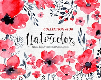 Watercolor flower clipart: 38 red & grey black branches flowers boho aquarelle clipart, poppy watercolour herbs clip art Free Commercial Use
