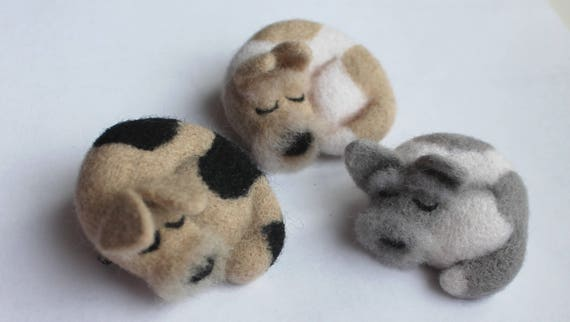 Cute Needle felted Raccoon brooch Felted jewelry Cute gift  Raccoon Pin Wife winter gift Wool felted animals Naturalism Animal jewelry