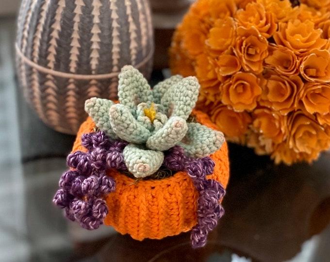 Succulent Pumpkin Planter Crochet Pattern
