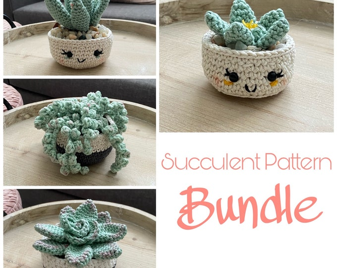 Succulent Pattern Bundle
