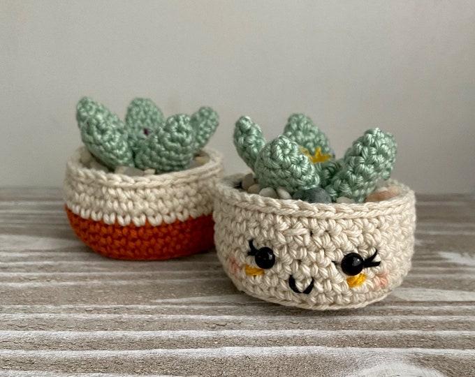 Baby Jade Plant Crochet Pattern