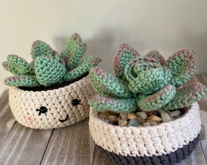 Succulent Collection crochet patterns | PlanetJune by June Gilbank ... | 540x680