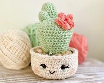 Desert Blossom Cactus
