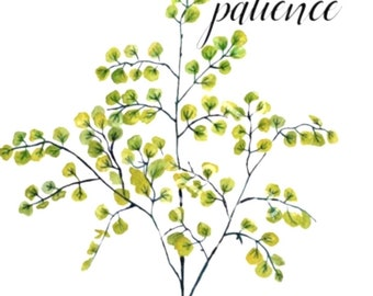 "Watercolor Botanical Typography Art Print 8 X 10 ""Patience"""