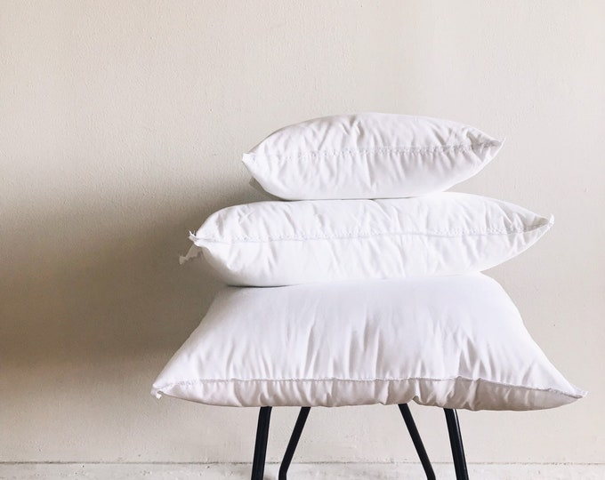 Down Alternative Pillow Insert (Size: 20x20)
