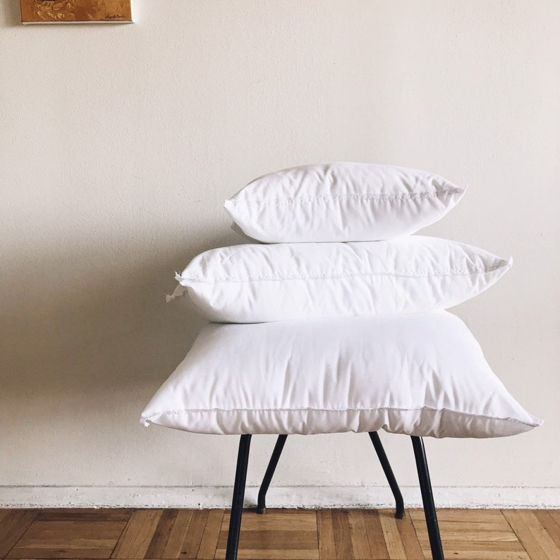 Down Alternative Pillow Insert Size: 20x20 image 0