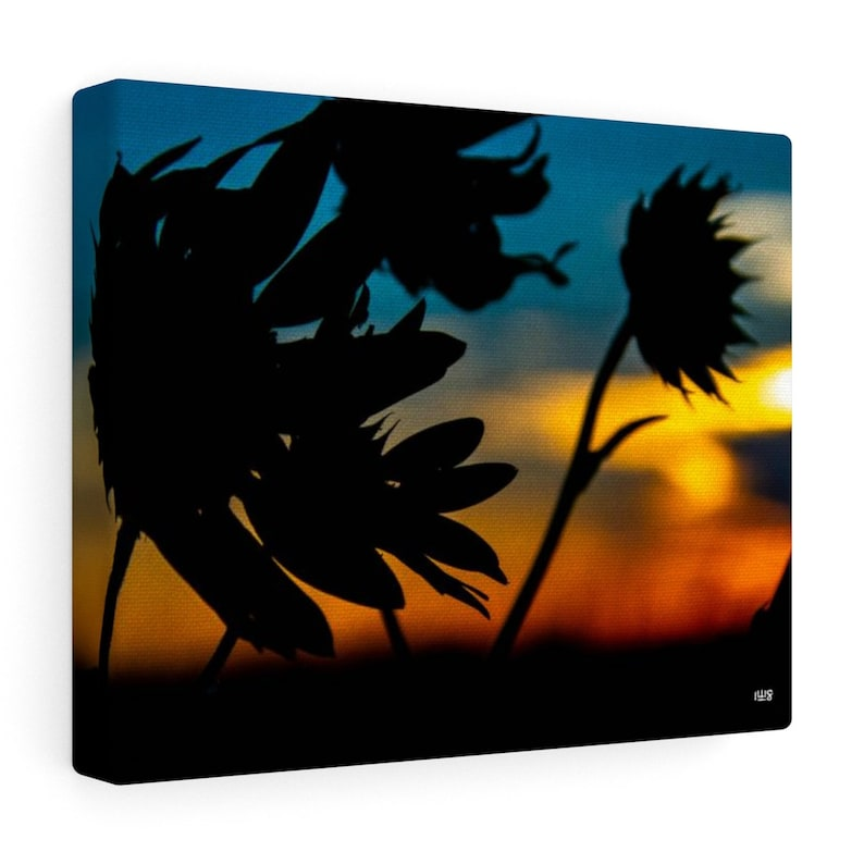 Sunflowers And Kansas Sunset Canvas Wall Art image 0