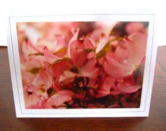 Photo Greeting Card | Handmade Card | Photo Note Card | Original Photography | Pink Dogwood