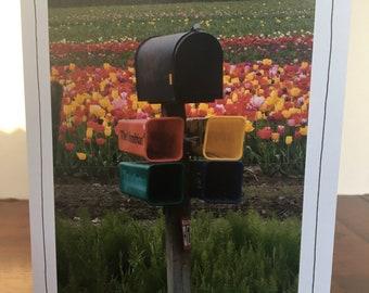 Photo Greeting Card | Handmade Card | Photo Note Card | Original Photography | Mailbox