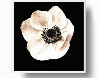 Anemone Print, Sepia Flower Print, Flower print, flower photo print, Flower poster, Printable Plant, sepia batanical wall art
