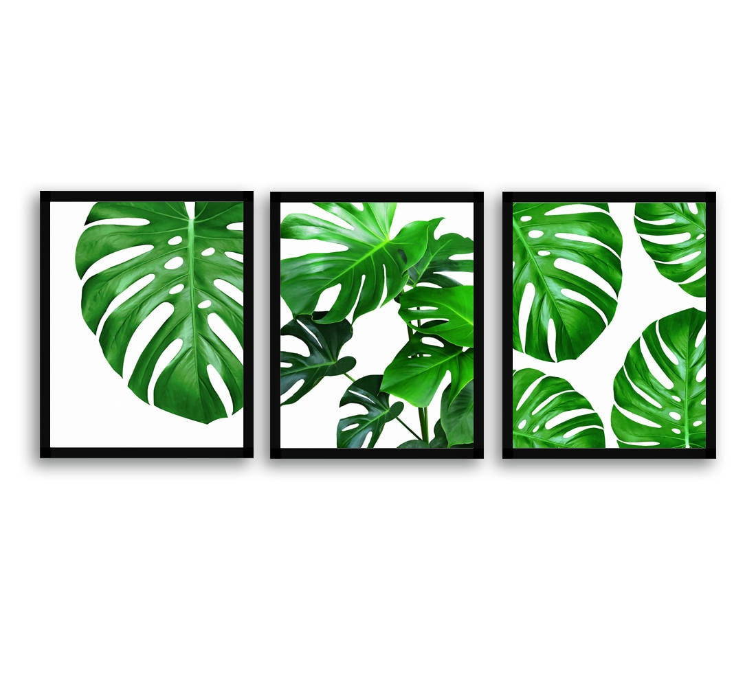 Watercolor Green Plants Monstera Nature Posters And Prints: Monstera Plant Set Philodendron Print Green Leaves Print