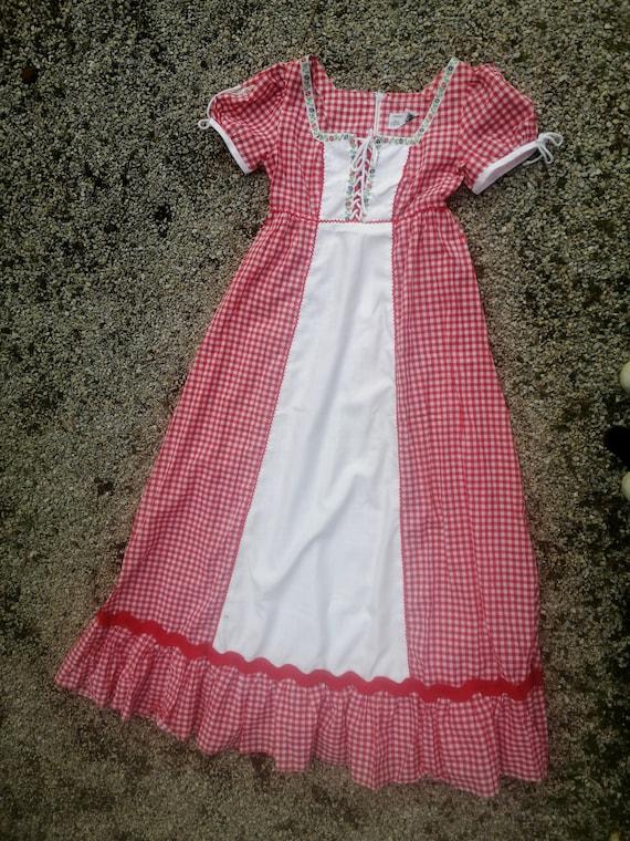 Vintage 60s 70s gingham dress