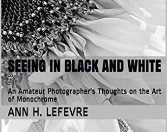 Seeing in Black and White (pdf version only)