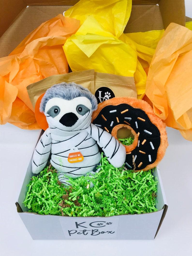 Halloween Dog Gift Box