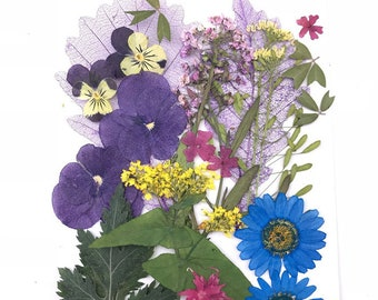 DIY Over 20 pieces Mix pressed flowers mixed pack - Cheap Global Shipping! dried dye flowers Purple Blue Mix