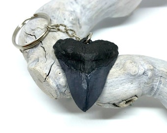 Megalodon Tooth Fossil Keychain | Dinosaur Fossil Stone | Shark Week Fans | Gift for Him | Handmade Collectible | Party Favors Trinket