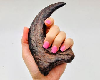 5.5 inch Jurassic Park style Velociraptor / Deinonychus Claw replica with stand. For Jurassic Park, Dinosaurs, & Fossil fans!
