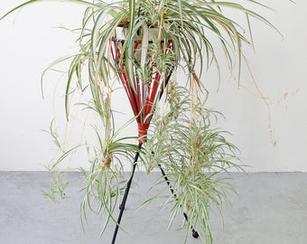 Vintage Black and Red Wrought Iron Spaghetti Cord Tripod Planter Retro Metal Tall Circular Three Legged Polish Eastern European Plant Stand