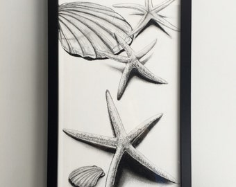 Charcoal shell and starfish