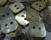 50 Square Shell Buttons