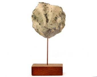 Minimalist sculpture, fossil oyster