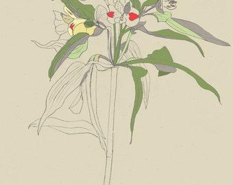 Art print of original illustration 'Alstroemeria', lily, lilies, flower illustration, botanical, plants, flower sketch, drawing