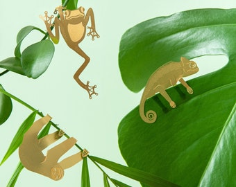 Plant Animal Decorations - houseplant gifts