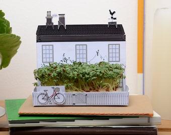 Mini growing kit gift, English village pub or shop