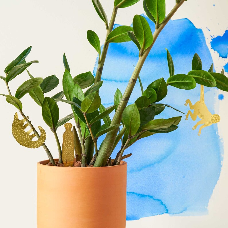 Plant Animal Decorations  house plant gifts image 6
