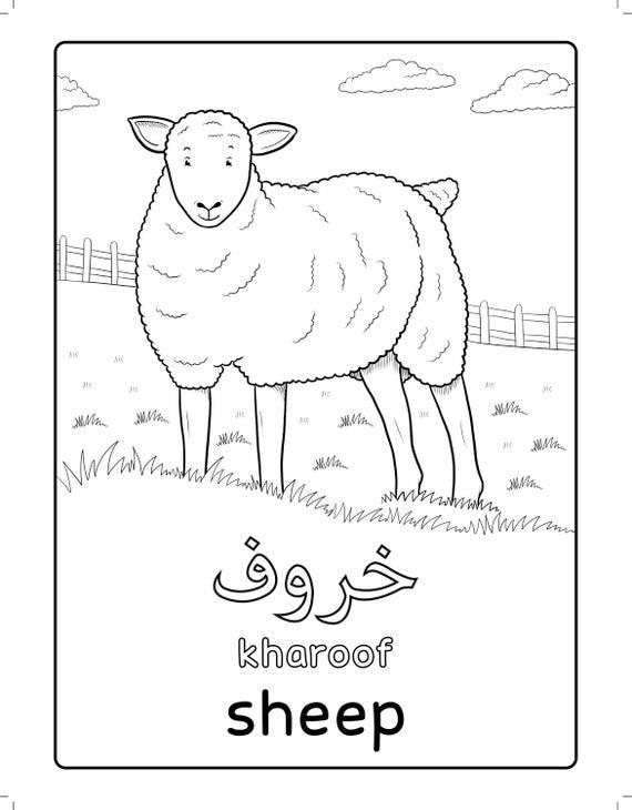 Arabic Farm Animals Coloring Book (Arabic learning Arabic Coloring Arabic  education Colouring Book Islamic Book Islamic colouring )