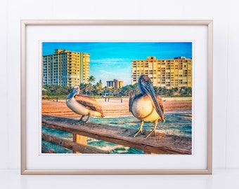Pompano Beach Pier Pelicans-Unmatted, Unframed Pelican Photograph, Florida Photography