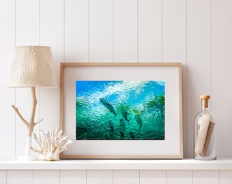 Underwater Print, Coastal Wall Art, Underwater Photography