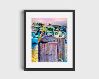 Florida Pelican Photograph, Nautical Wall Decor, Florida Art, Unmatted Unframed