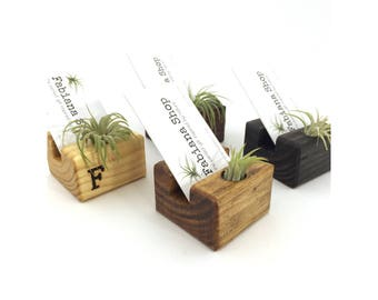 vertical business card holderset of 12 desk decor office decor with air plant upcycled 1 character personalized air plant desk office - Business Card Holder Desk