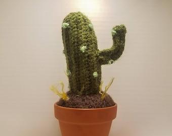 Amigurumi Crocheted Cactus