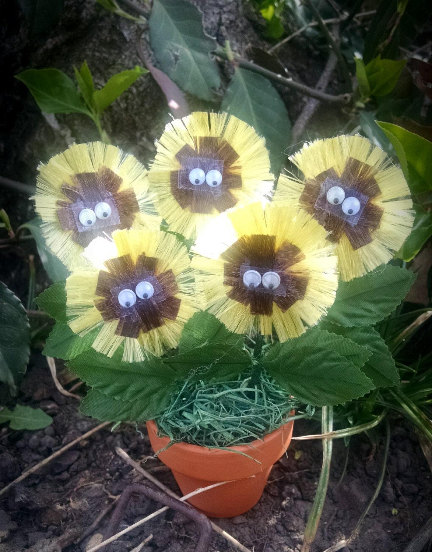 Mini Plant Mini Fuzzy Flower In White Bucket Miniature Garden
