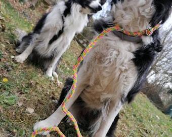 One Size, Leash 2in1, sliding, retriever, adjustable, pink, rope, handmade, Labrador, Australian Sheperd, Boxer