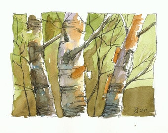 Print of watercolour painting - Birches by Judit Szabo