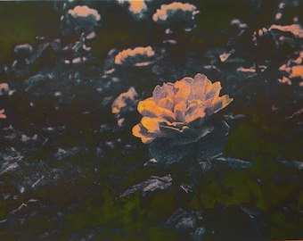 Rose Risograph Photo Print