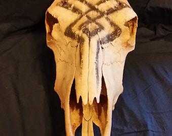 Decorative Cow Skull