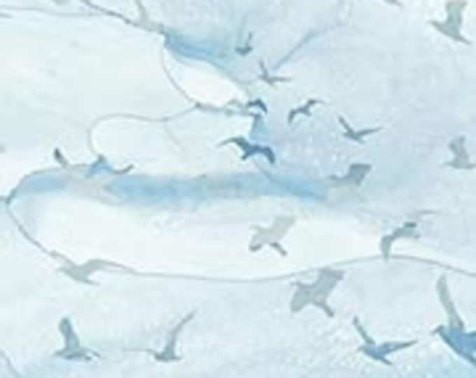 "Sail Away Birds by Northcott  DP24170-42  - 100% Cotton 44/45"" wide fabric"