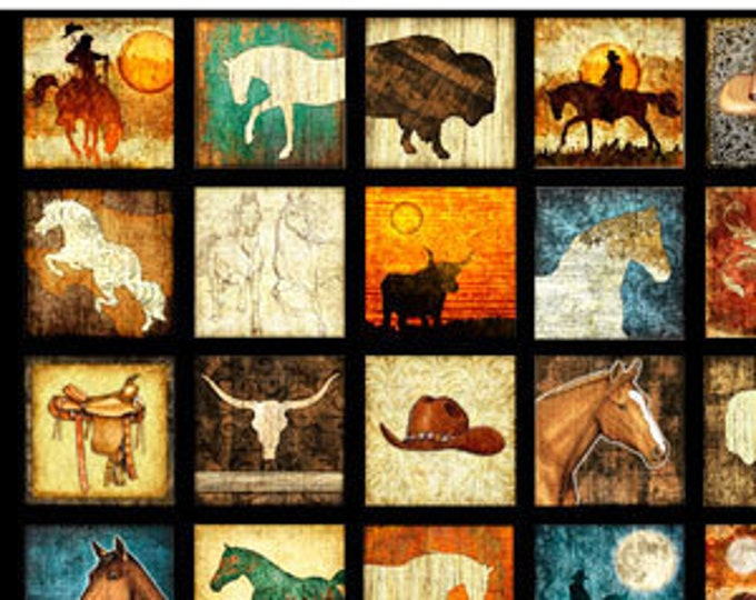 "Unbridled Small Blocks by  Dan Morris 24689-E  QT Fabrics 24"" Panel Black 100% cotton (#10)"