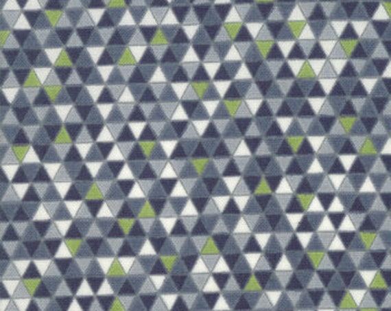 Geometry Pythagaras by Janet Clare for Moda 1490-19   44-inch Wide  100% Cotton Fabric Yardage