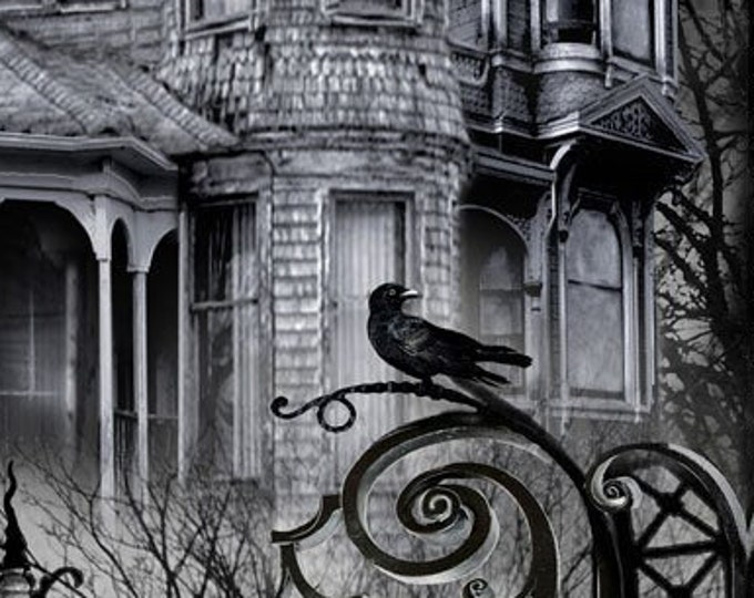 """Wicked Haunted House by Timeless Treasures   24"""" Panel   44"""" wide 100% Cotton (#25)"""