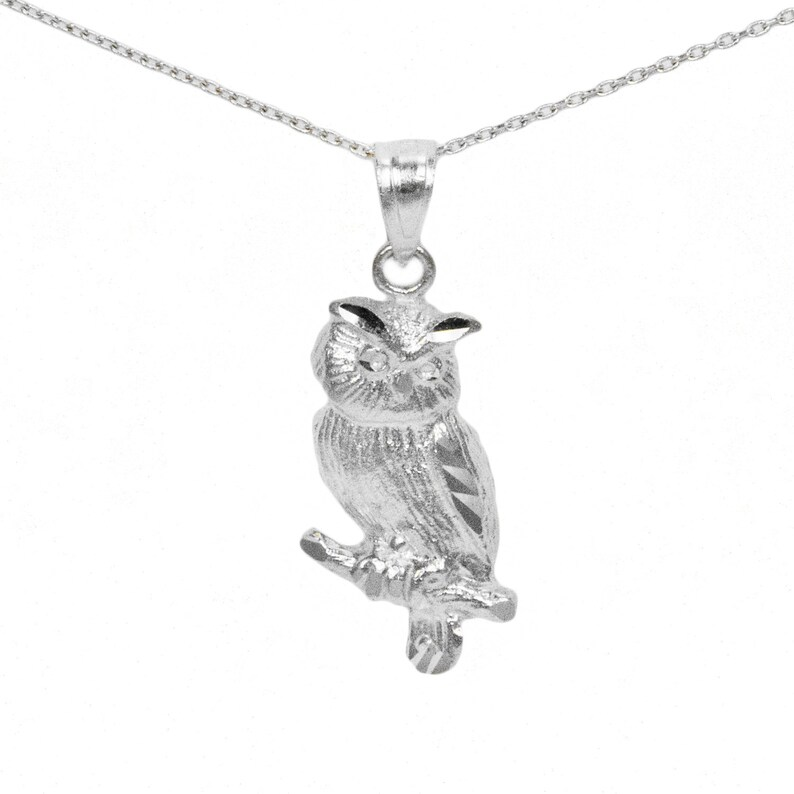 3afb6c2b9 14k White Gold Owl Necklace   Etsy