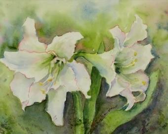 White Amaryllis Blossoms, 7x10 Small ORIGINAL Watercolor