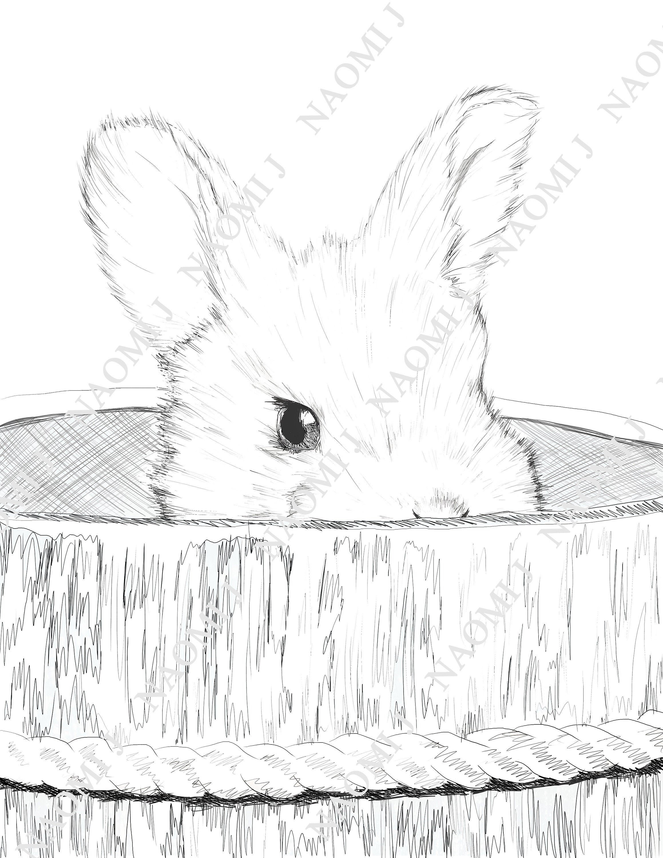 Baby Bunny Easter Coloring Page Kids Color Rabbit Printable Etsy