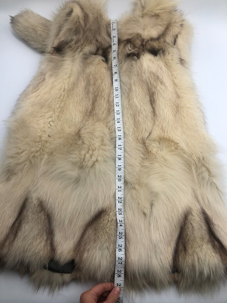 Beige polar fox vest with tail collar woman size M.