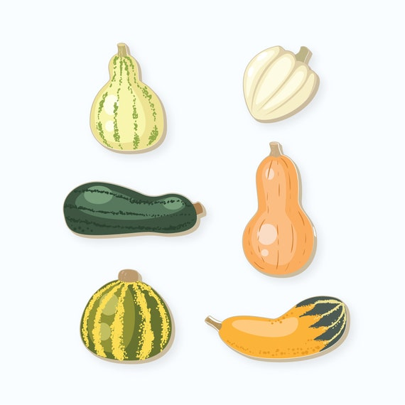 Gourd Cookie Cutters | Set of Gourd Cookie Cutters | Fall Cookie Cutters | Thanksgiving Cookie Cutters | FrostedCo
