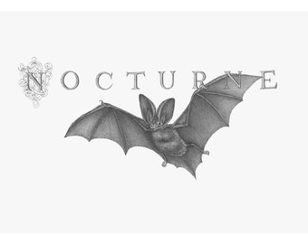"""5.5"""" x 9"""" Limited Edition Giclee Print of Original Illustration of """"Nocturne"""""""